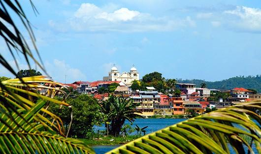 Guatema-Flores