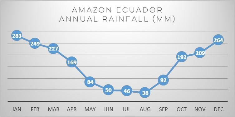 ecuador-amazon-rain