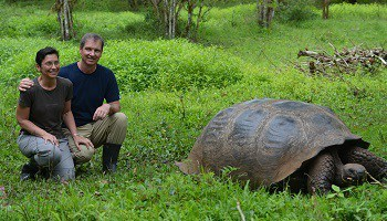 giant-tortoise-santa-cruz-island-private-farm