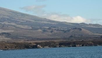 isabela-island-galapagos