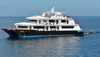 luxury-catamaran-mv-petrel-galapagos-islands