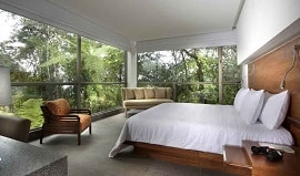 mashpi-lodge-suite-cloud-forest-ecuador