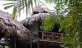Nitun Ecologde Tikal