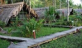 Orinoco Delta Lodge - Venezuela