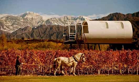entre cielos vineyards