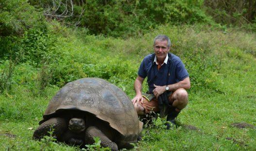 alex-burridge-santa-cruz-island-galapagos-giant-tortoise