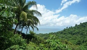 corcovado-national-park-costa-rica