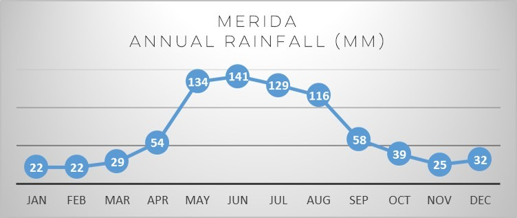 merida-rain