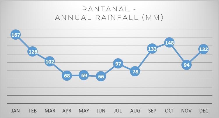pantanal-rainfall