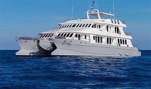 Alya Galapagos Ship