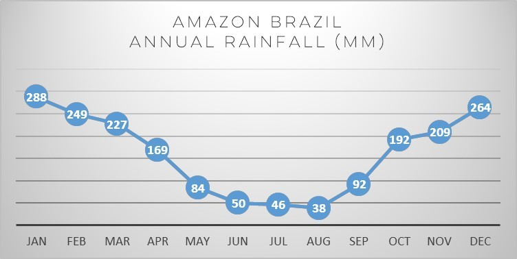 amazon-brazil-rain