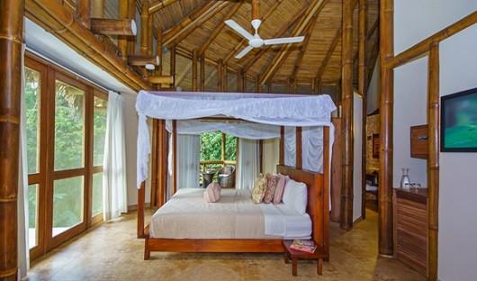 la-selva-lodge-ecuadorian-amazon