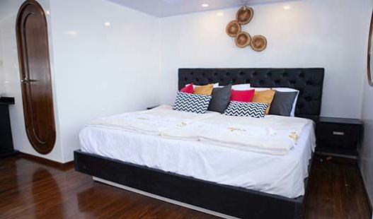 petrel-double-cabin2