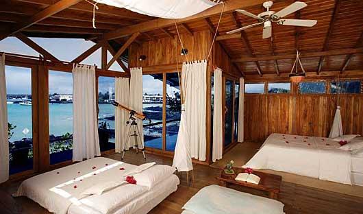 red-mangrove-room-1