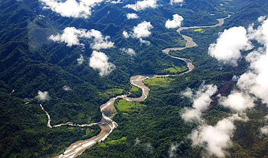 river-amazon-rainforest