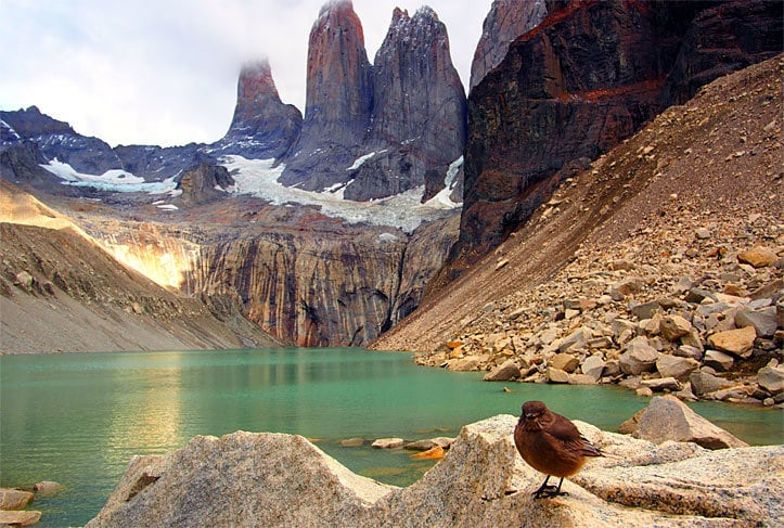 Torres del Paine National Park, Chile, Patagonia