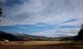 Landscape Hacienda Zuleta