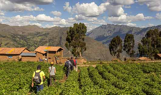 Sacred Valley and Lares Adventure Farmhouse