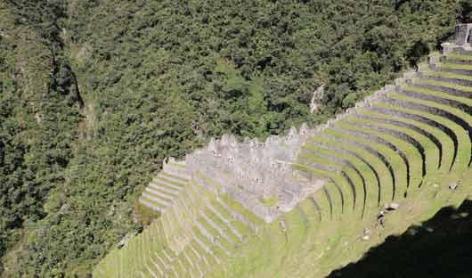 winya-wayna-inca-trail-peru