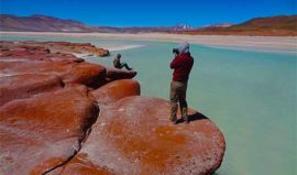 Altiplanic Lagoons Tierra Atacama