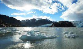 Grey Glacier Tierra Patagonia