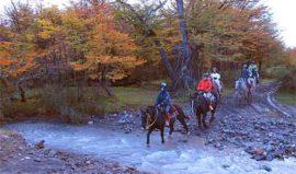 Horseride Estancia