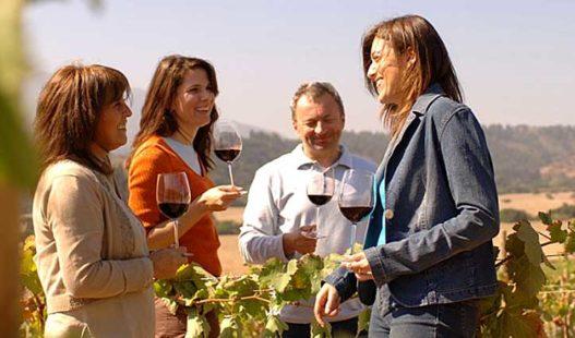 Casona Matetic Wine Tasting