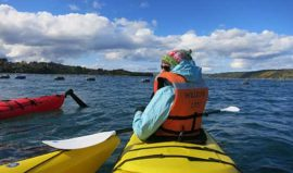 Kayaking Chiloe