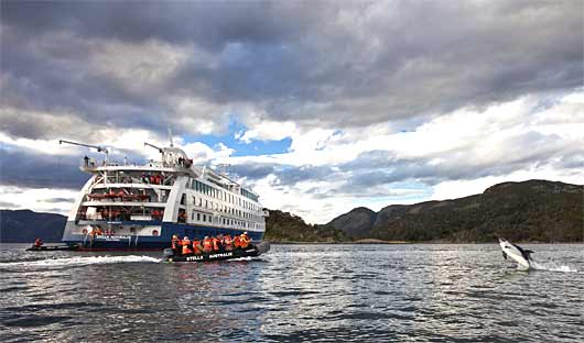 Australis Patagonia Cruise with dolphin