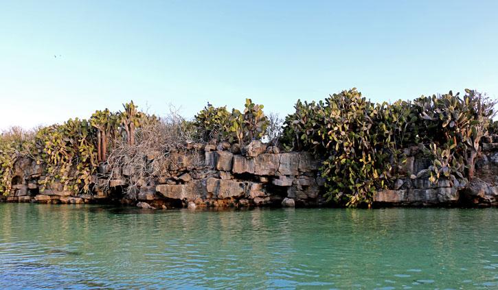 Darwin Beach Lagoon, Genovesa Island