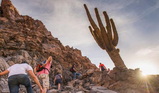 ALTO ATACAMAHiking in Cactus Valley (Los Cardones Ravine), Atacama Desert, North Chile