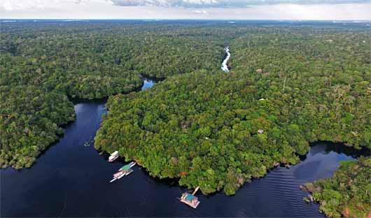 Anavilhanas Amazon Cruise Brazil
