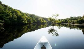 Anavilhanas Lodge Canoe