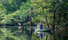 Anavilhanas Lodge Canoe Fishing
