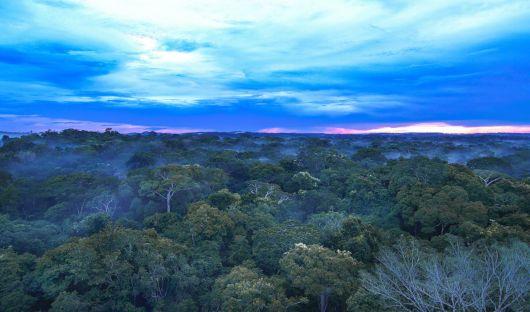 Cristalino Lodge Private Reserve