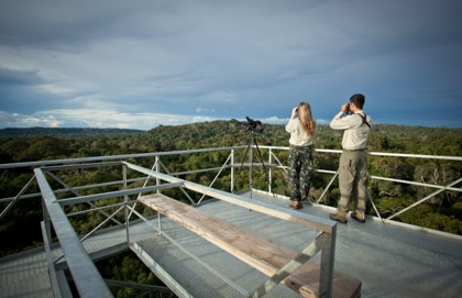 Cristalino Lodge Observation Towers