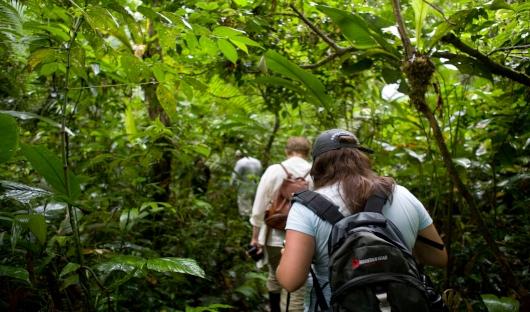Walking Excursions - Aqua Expeditions
