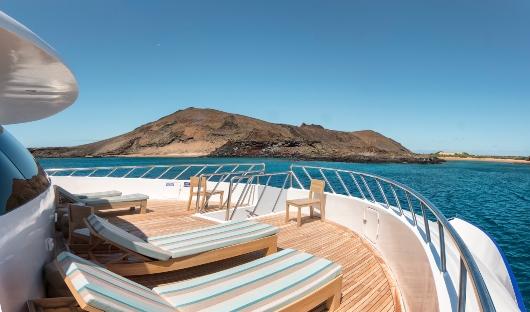 Endemic - front sun terrace -