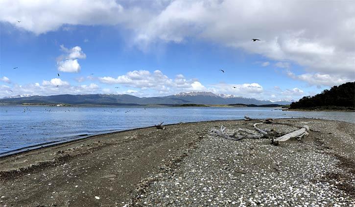 Gable Island day tour Ushuaia