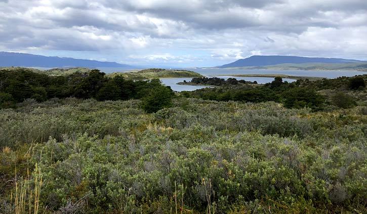 Gable Island, Day Tour Ushuaia