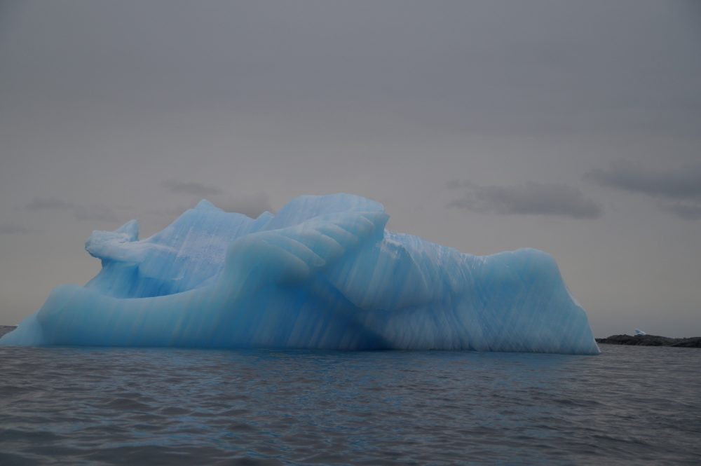 Blue Iceberg by David Kaufmann