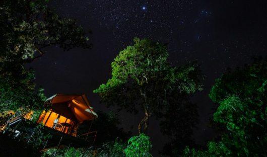 night tents