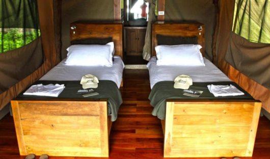 twin accommodation resized